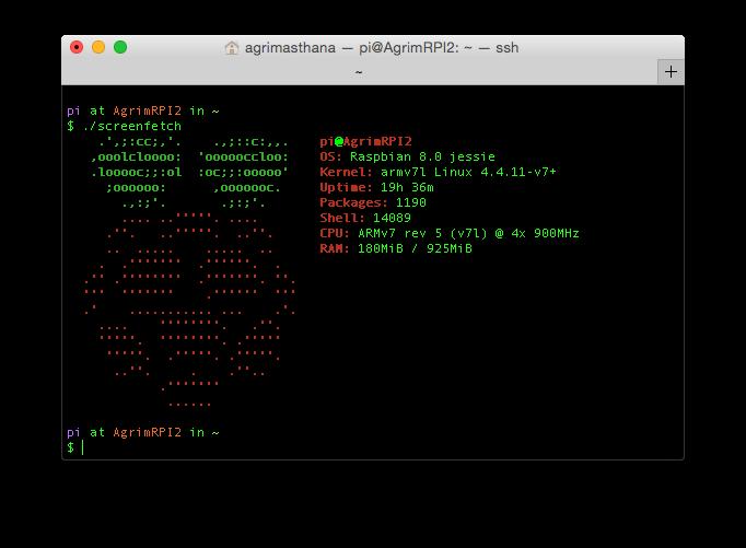 Raspberry Pi 2 info